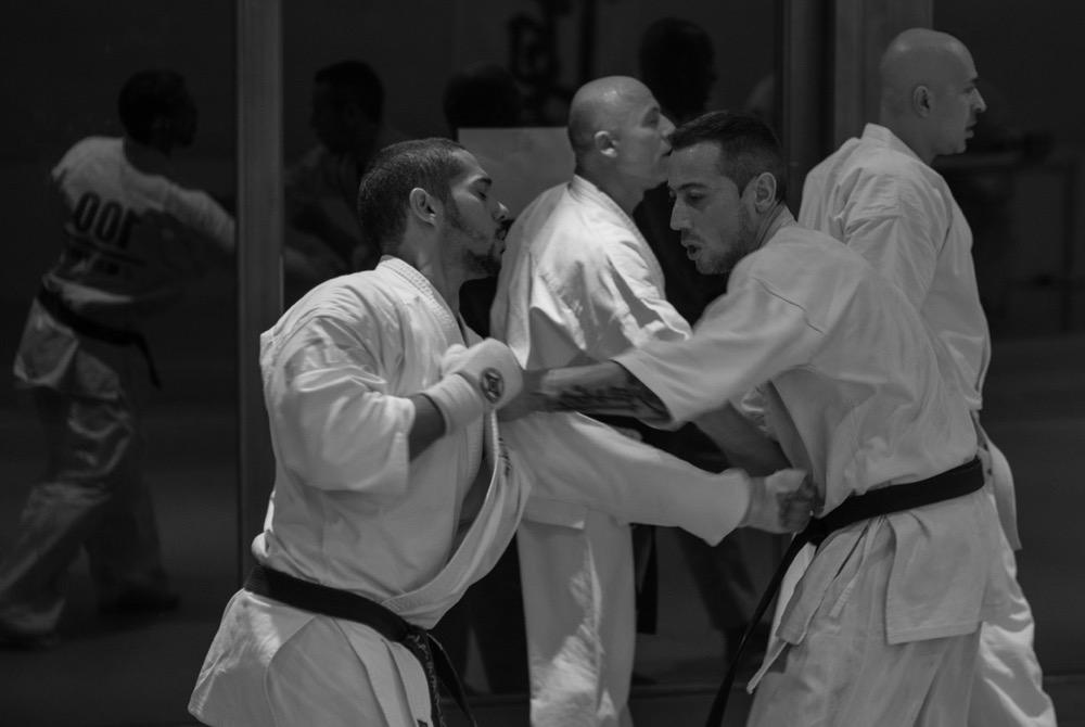 6th Swiss Kyokushin Winter Camp  16-18.12.16 - 148