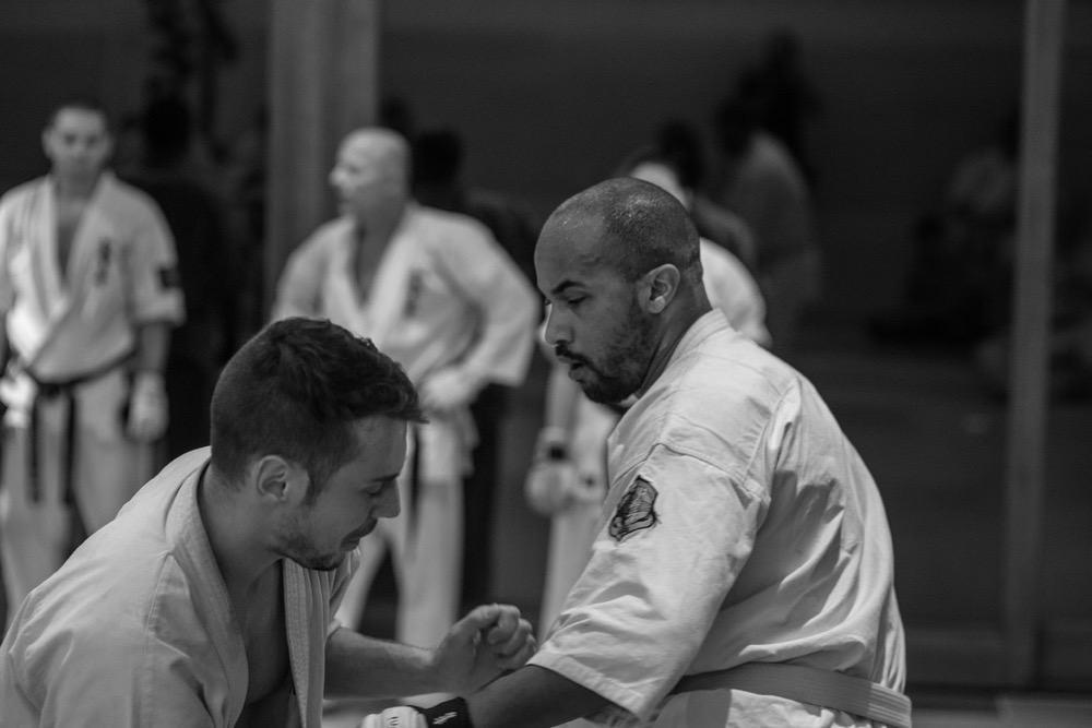 6th Swiss Kyokushin Winter Camp  16-18.12.16 - 152