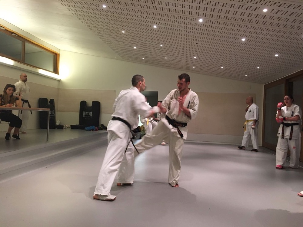 6th Swiss Kyokushin Winter Camp  16-18.12.16 - 203