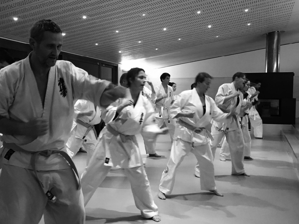 6th Swiss Kyokushin Winter Camp  16-18.12.16 - 214