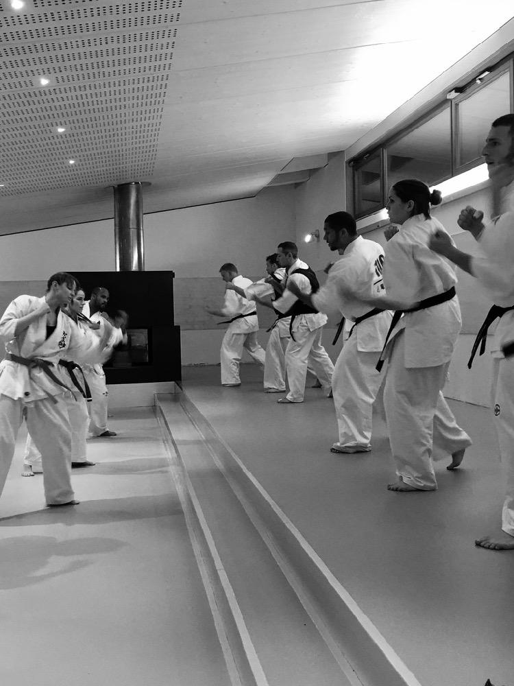 6th Swiss Kyokushin Winter Camp  16-18.12.16 - 216