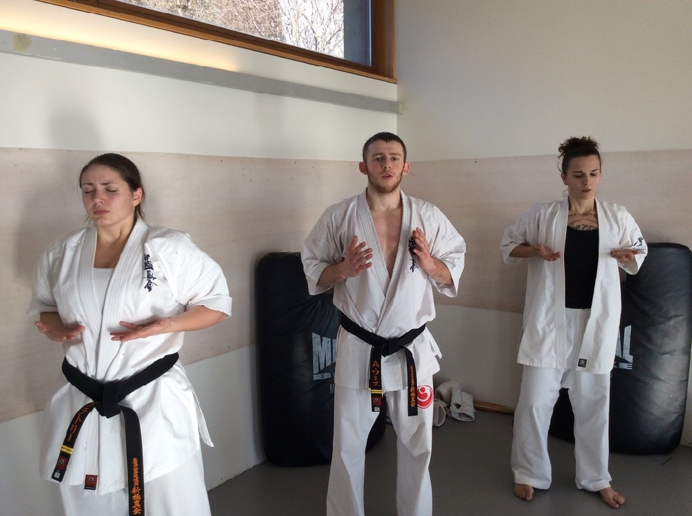 6th Swiss Kyokushin Winter Camp  16-18.12.16 - 24