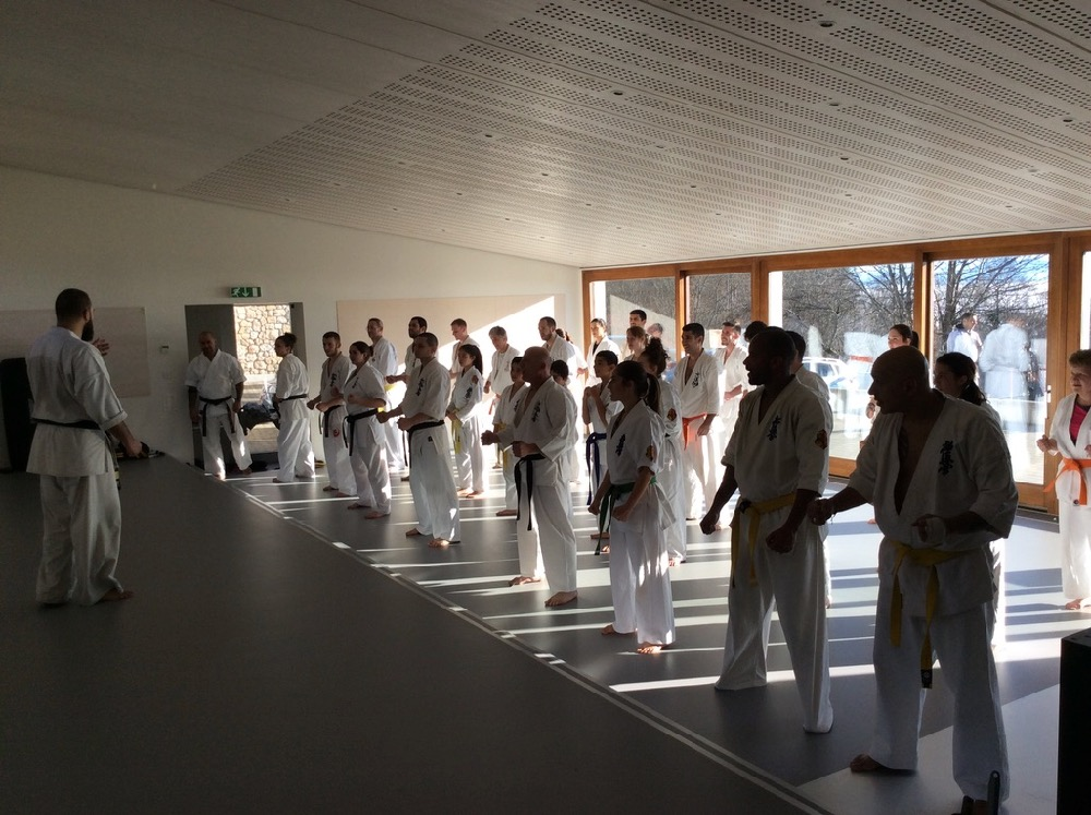 6th Swiss Kyokushin Winter Camp  16-18.12.16 - 25
