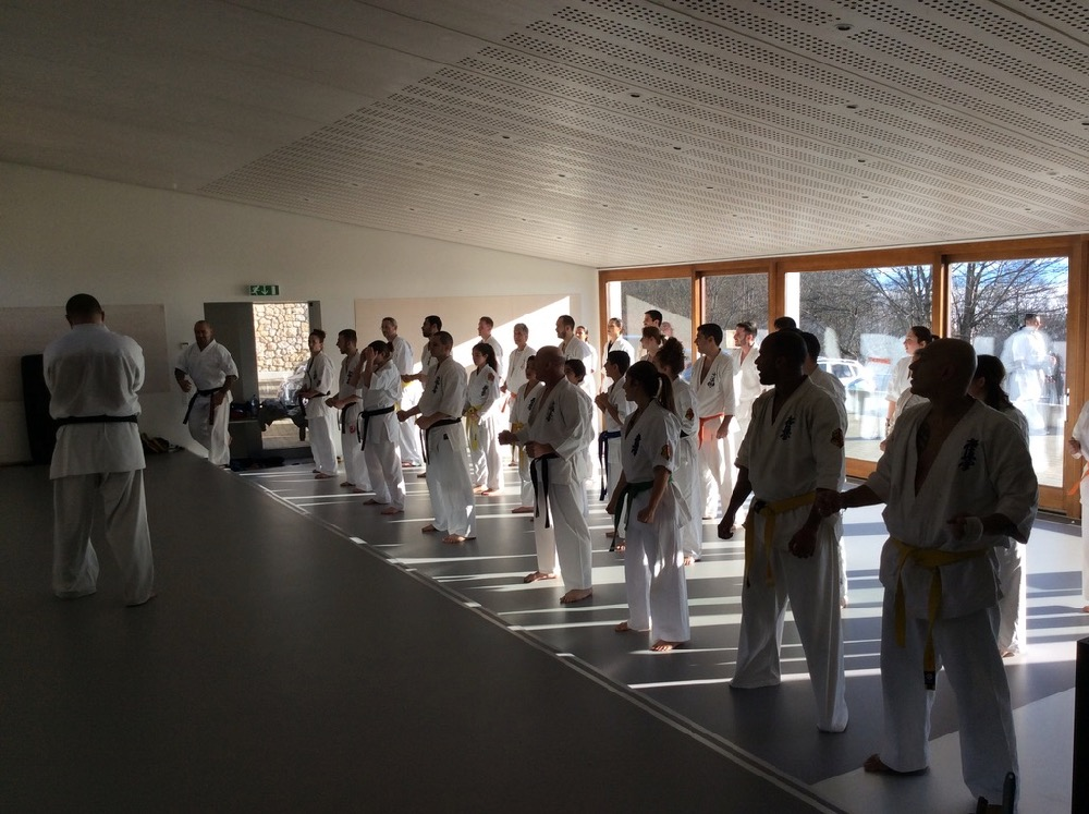 6th Swiss Kyokushin Winter Camp  16-18.12.16 - 26