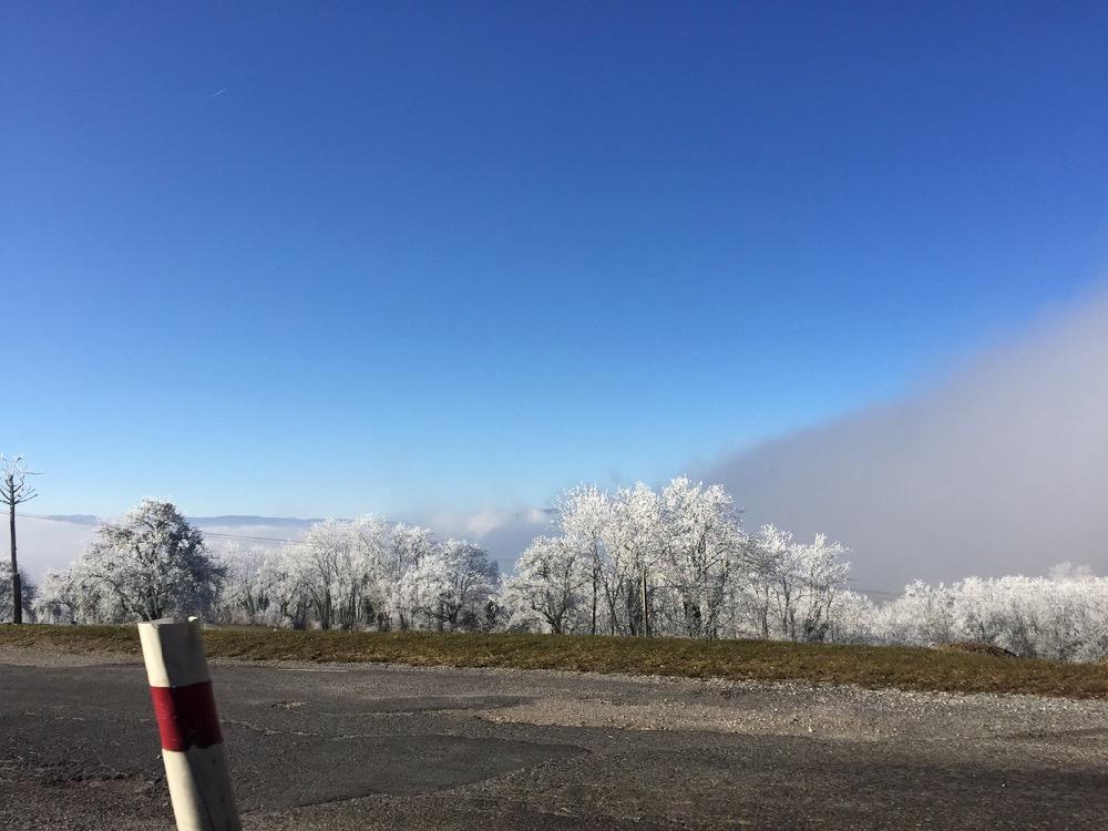 6th Swiss Kyokushin Winter Camp  16-18.12.16 - 49