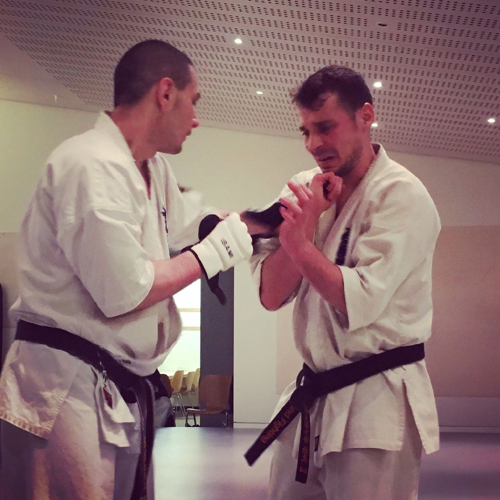 6th Swiss Kyokushin Winter Camp  16-18.12.16 - 51