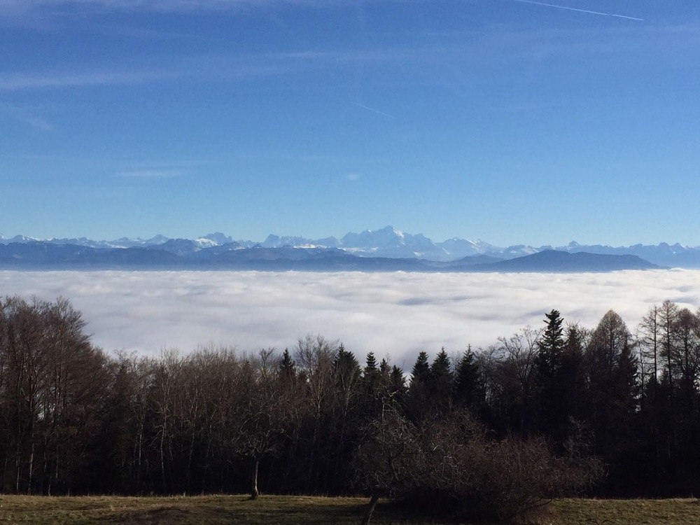6th Swiss Kyokushin Winter Camp  16-18.12.16 - 82