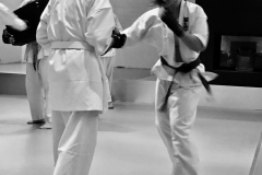 6th Swiss Kyokushin Winter Camp  16-18.12.16 - 220