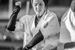 6th Swiss Kyokushin Winter Camp  16-18.12.16 - 278