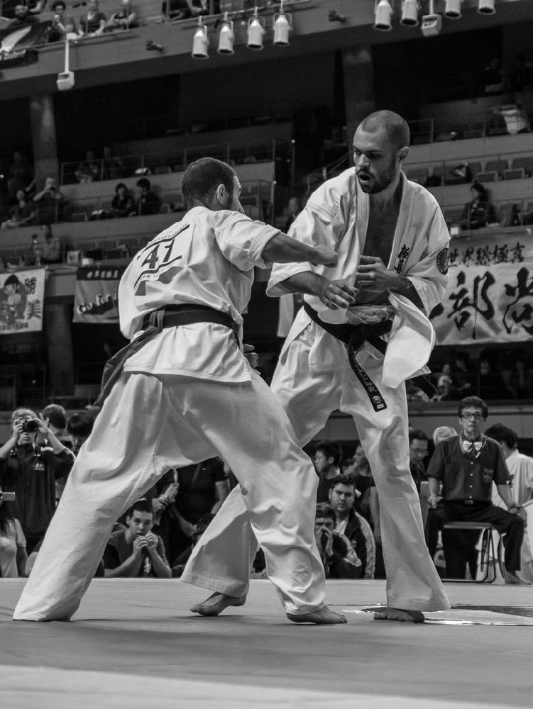 Championnat du Monde So-Kyokushin. Shizuka Japon, octobre 2016 - 50