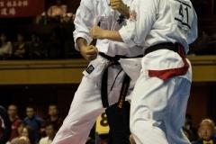 Championnat du Monde So-Kyokushin. Shizuka Japon, octobre 2016 - 63