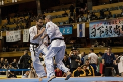 Championnat du Monde So-Kyokushin. Shizuka Japon, octobre 2016 - 68