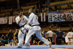Championnat du Monde So-Kyokushin. Shizuka Japon, octobre 2016 - 69