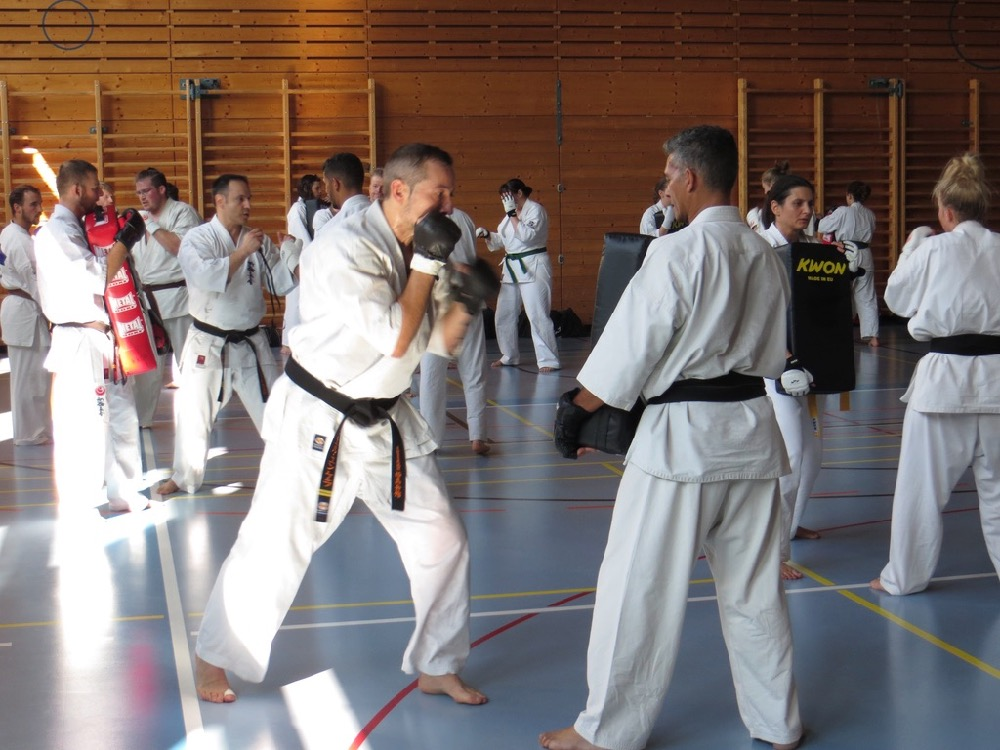 Entrainement National Shinkyokushin, Septembre 2018, Lausanne - 1