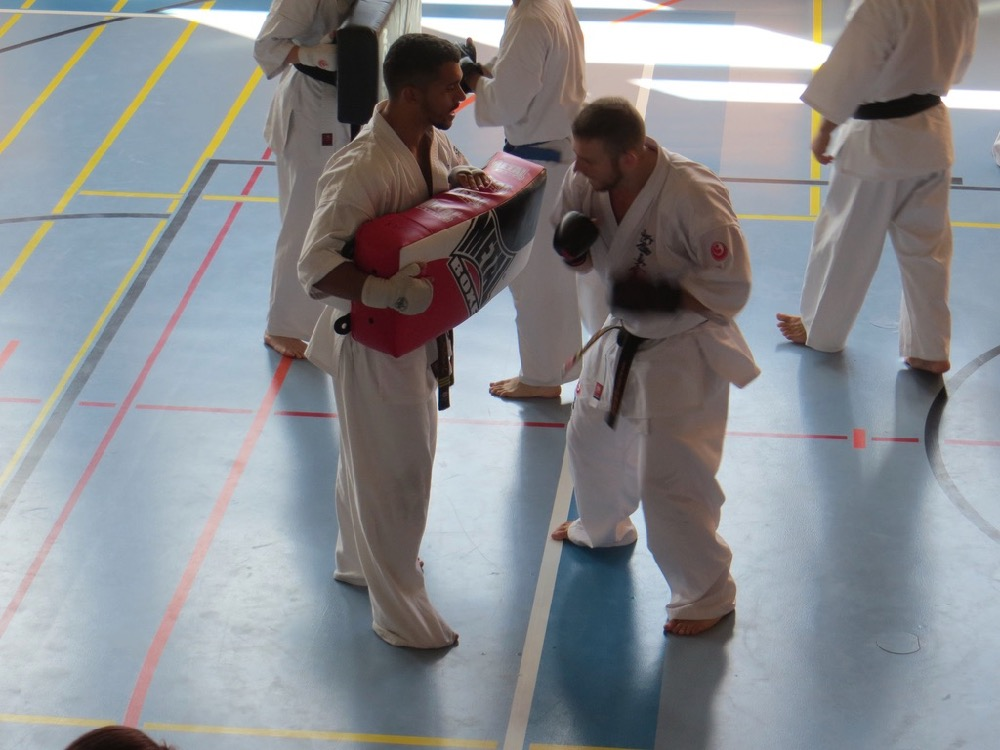 Entrainement National Shinkyokushin, Septembre 2018, Lausanne - 11