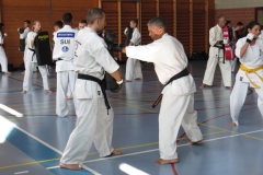 Entrainement National Shinkyokushin, Septembre 2018, Lausanne - 8