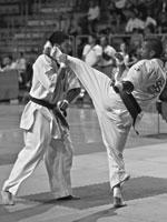 kyokushin-sacha-decosterd-02-150x200